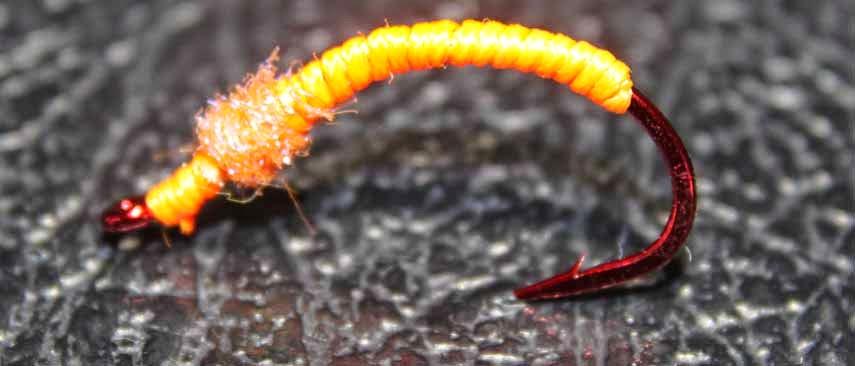 UV Worm