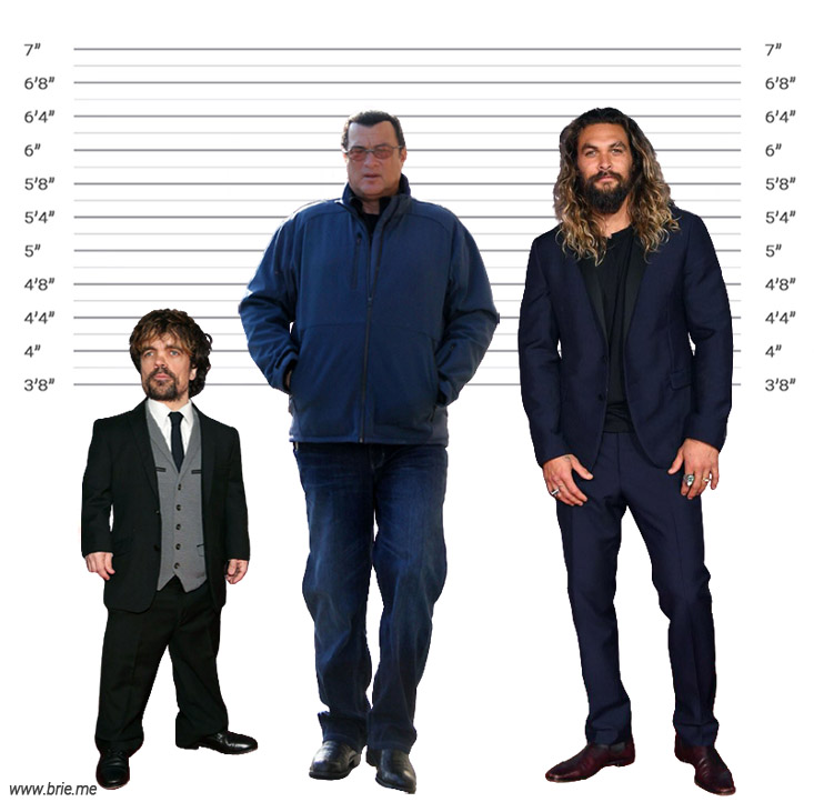 Steven Seagal height comparison with Peter Dinklage and Jason Momoa