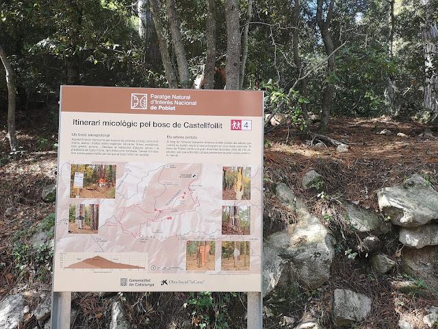 plano del itinerario micológico