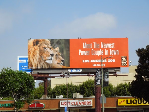 Newest power couple LA Zoo lions billboard