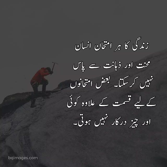 quotes about life in urdu english