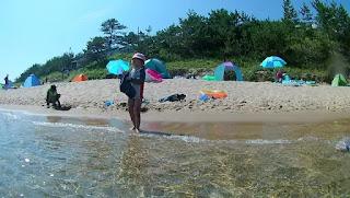 海側から砂浜を見る