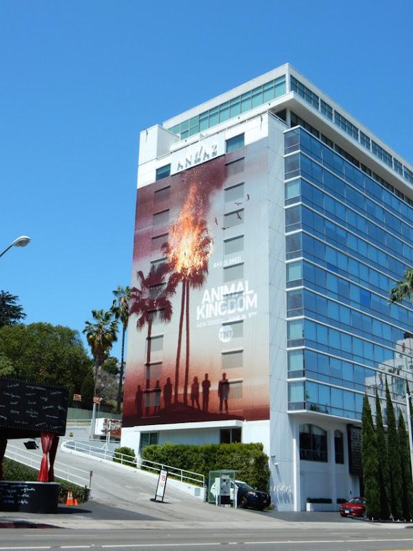 Giant Animal Kingdom season 1 billboard