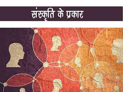 संस्कृति के प्रकार |भौतिक संस्कृति |अभौतिक संस्कृति| संस्कृति कितने प्रकार की होती है ? | Type Of Culture in Hindi