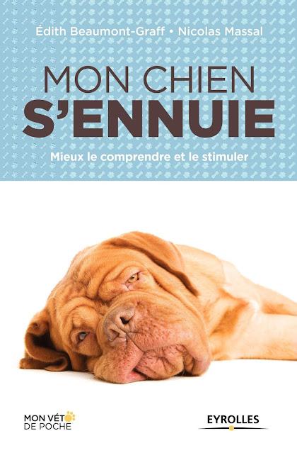 Mon chien s'ennuie  -  Mieux le comprendre et le stimuler(2015) - WWW.VETBOOKSTORE.COM