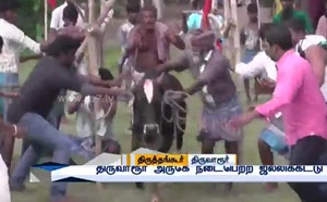Jallikattu ban defied, event organised across TN