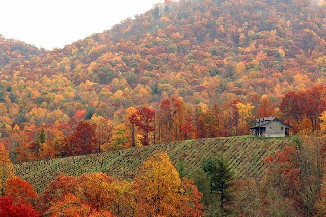 Fall America with 10 great destinations