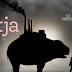 #CiaoNetflix: Okja
