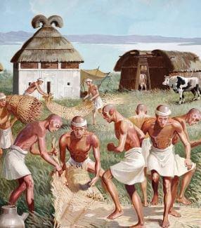 10 حقائق عن العصر الحجري الحديث