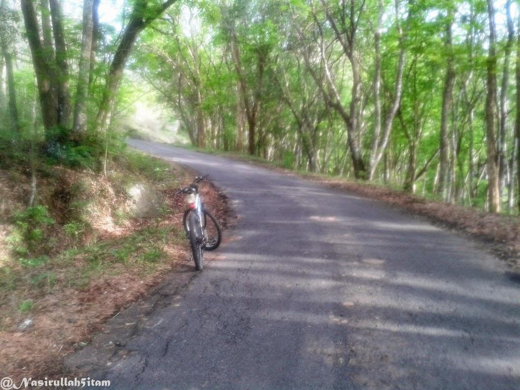 Jalanan sudah dekat dari Hutan Pinus, Dlingo