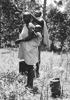 Working on a coffee plantation 1939 Kenya