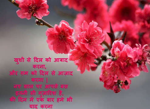 Happy New Year Shubhkamnaye in Hindi