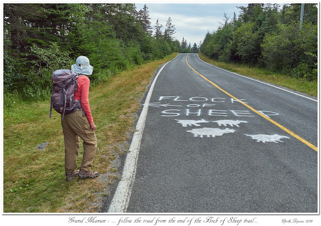 Grand Manan: ... follow the road from the end of the Flock of Sheep trail...