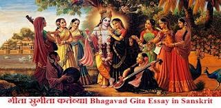 Bhagavad Gita Essay in Sanskrit