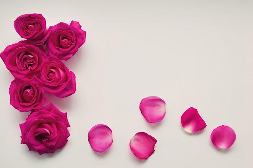 أحلى الورود ورق حائط 16