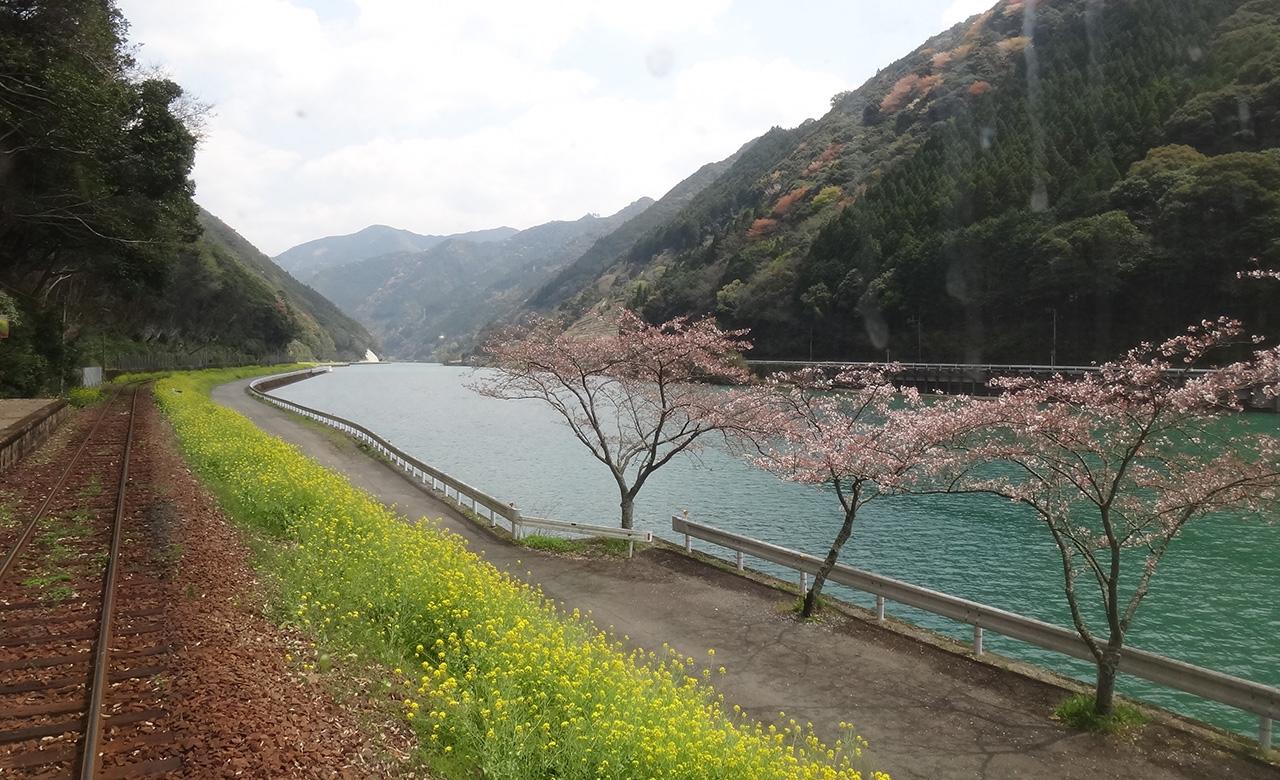 Musim Semi di Kumamoto