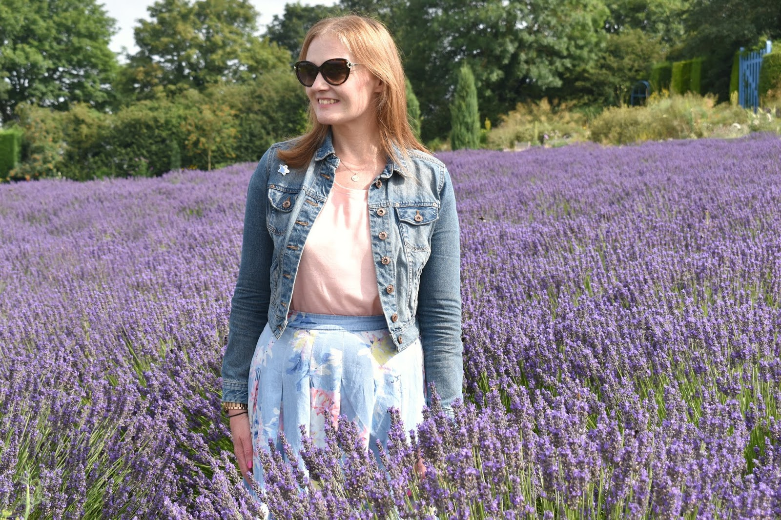 Where to Find Lavender Fields in the North of England - A Trip to Yorkshire Lavender
