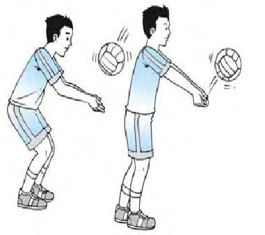 Teknik Dasar Passing Pada Permainan Bola Voli - Blog Olah Raga
