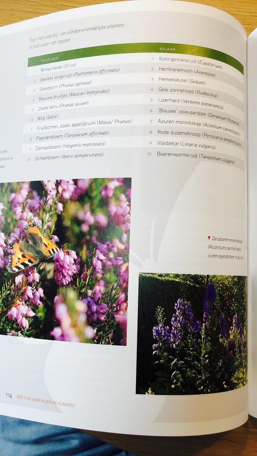 recensie boek tuin bijen vlinders albert vliegenthart insecten