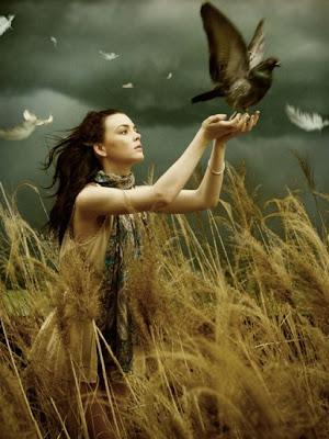 ** Pássaro livre**