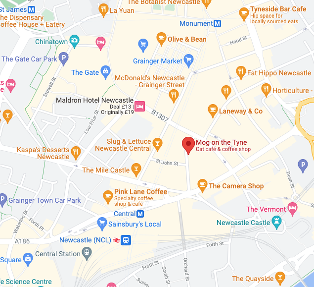Mog on the Tyne   Newcastle Cat Cafe Review  - map