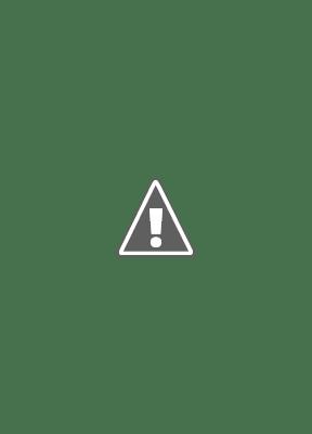 quần võ karatedo - trung nghĩa sport