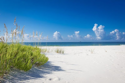 Perdido Key Condo Sales & Vacation Rental Homes B y Owner