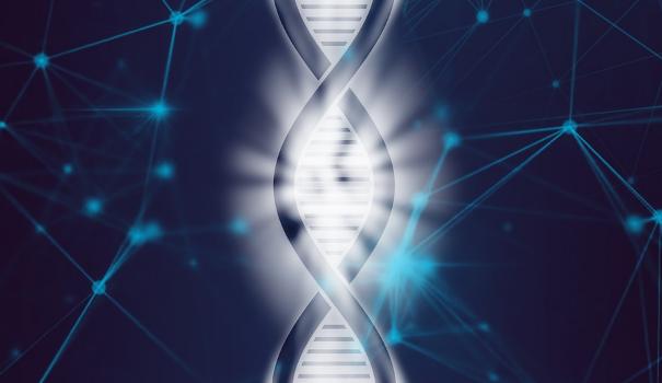 PTK BIOLOGI SMA PEMBELAJARAN VISUAL BERBASIS PROYEK MINIATU