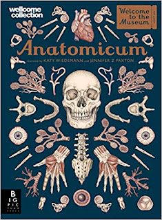 Anatomicum by Jennifer Z Paxton (Author)
