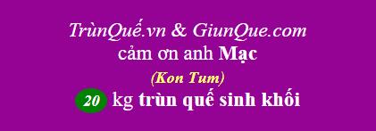 Trùn quế giống Kon Tum