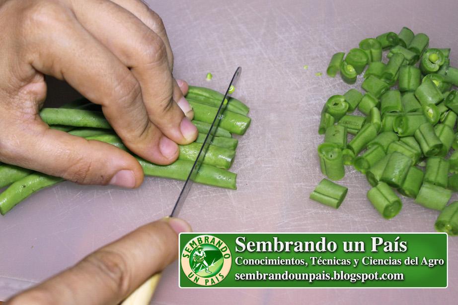 preparación culinaria de vainitas o ejote