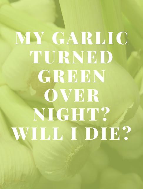 My garlic turned green over night Will I die
