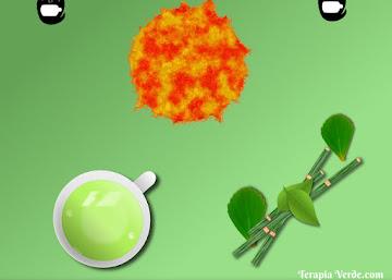 Receita Termogênica: Chá Verde com Boldo e Cavalinha