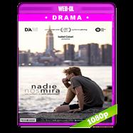 Nadie nos mira (2017) WEB-DL 1080p Latino
