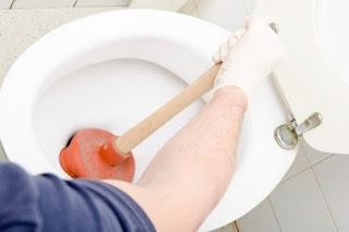 Kamar mandi atau Wc merupakan daerah yang tidak jauh dari anyir bauan yang tidak sedap atau  Tips Menghilangkan Bau Pesing Di WC Atau Toilet
