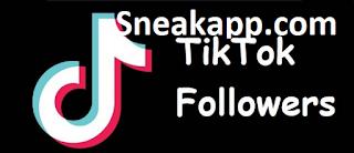Sneakapp. com | sneakapp.com Hasilkan followers tiktok gratis 2020