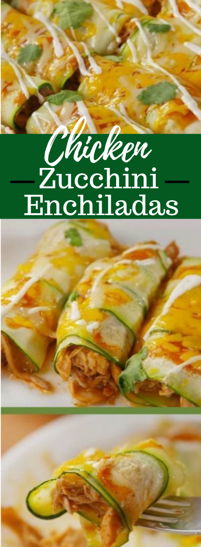Chicken Zucchini Enchiladas – Low Carb Recipe #vegan
