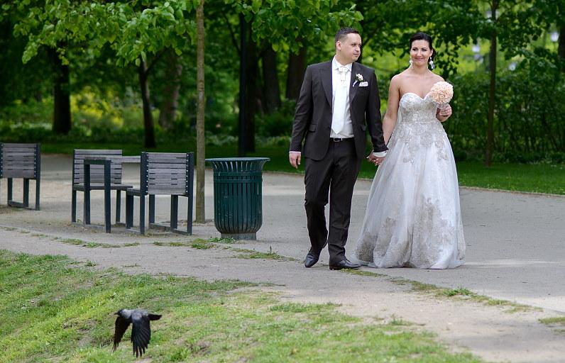 Vestuvių fotosesija Vilniaus Bernardinų sodelyje(Sereikiškių parkas)
