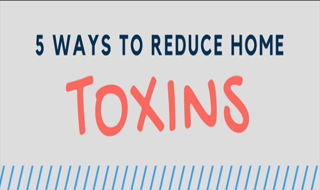 How to reduce toxins in your home – 5 Easy Ways