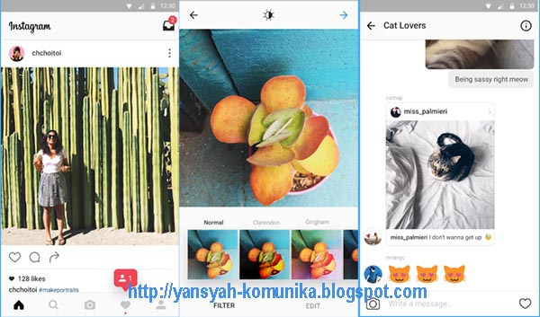 Download Instagram v8.1.0 Final Apk Latest version