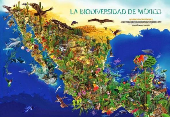 recursos naturales mexico