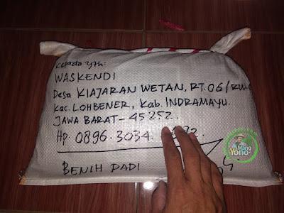 Benih Padi TRISAKTI Pesanan WASKENDI Indramayu, Jabar.  (Sesudah di Packing)