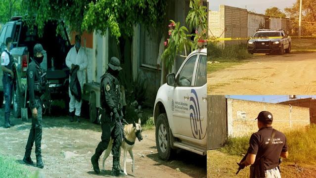 113 cuerpos encontrados en El Salto y 25 más en Ixtlahuacán, los muertos hayados en las fosas de El Cártel Nueva Plaza y El CJNG