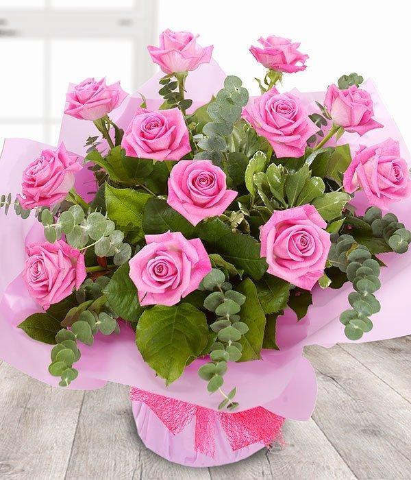 bunga mawar pink indah