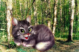 кошка Джелли