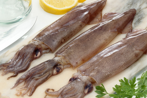 cooking tips squid