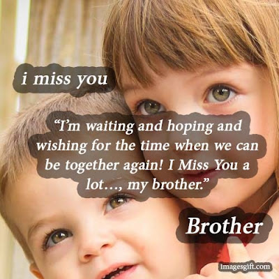 missing brother quotes