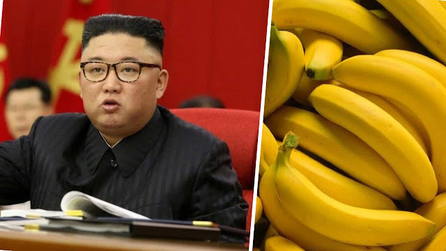 Severe Food Crisis in North Korea