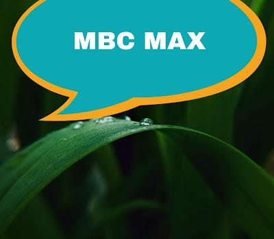تردد قناة MBC MAX الجديد على القمر نايل سات 2020