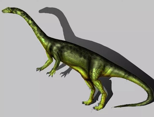 Nama Ammosaurus berasal dari kata Yunani ammos berarti tanah berpasir dan sauros adalah kadal, merujuk pada batu pasir di mana Ammosaurus ditemukan dan sifat ciri reptil Ammosaurus. Saat ini ada satu spesies yang valid (A. major), dinamai demikian karena lebih besar dari Anchisaurus, yang pada awalnya dianggap sebagai spesies kedua. Ahli paleontologi Amerika terkenal, Othniel Charles Marsh, menciptakan nama khusus ini pada tahun 1889. Pada tahun 1891, Marsh menciptakan genus baru Ammosaurus untuk spesies ini dan kemudian menamai spesies lain (Ammosaurus solus) pada tahun 1892, meskipun para ilmuwan sekarang menganggapnya identik dengan A. major.